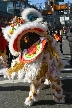 Chinese New Year, Canada Stock Photographs