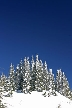 Cypress Mountain, Canada Stock Photos