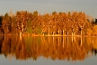 Burnaby Lake, Canada Stock Photos